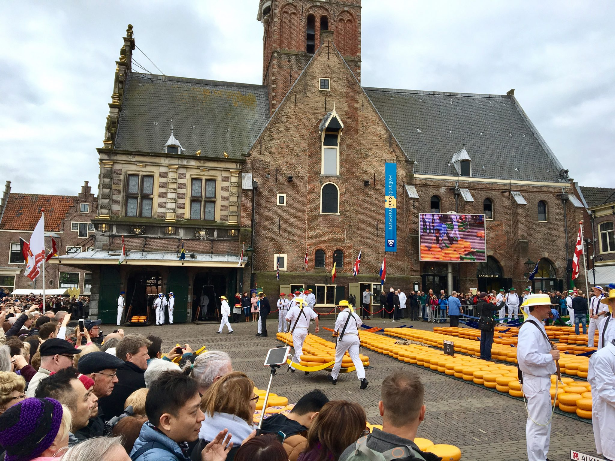 "Cheese market Alkmaar escorted motorhome tour ""Springtime in Holland"" 2017"