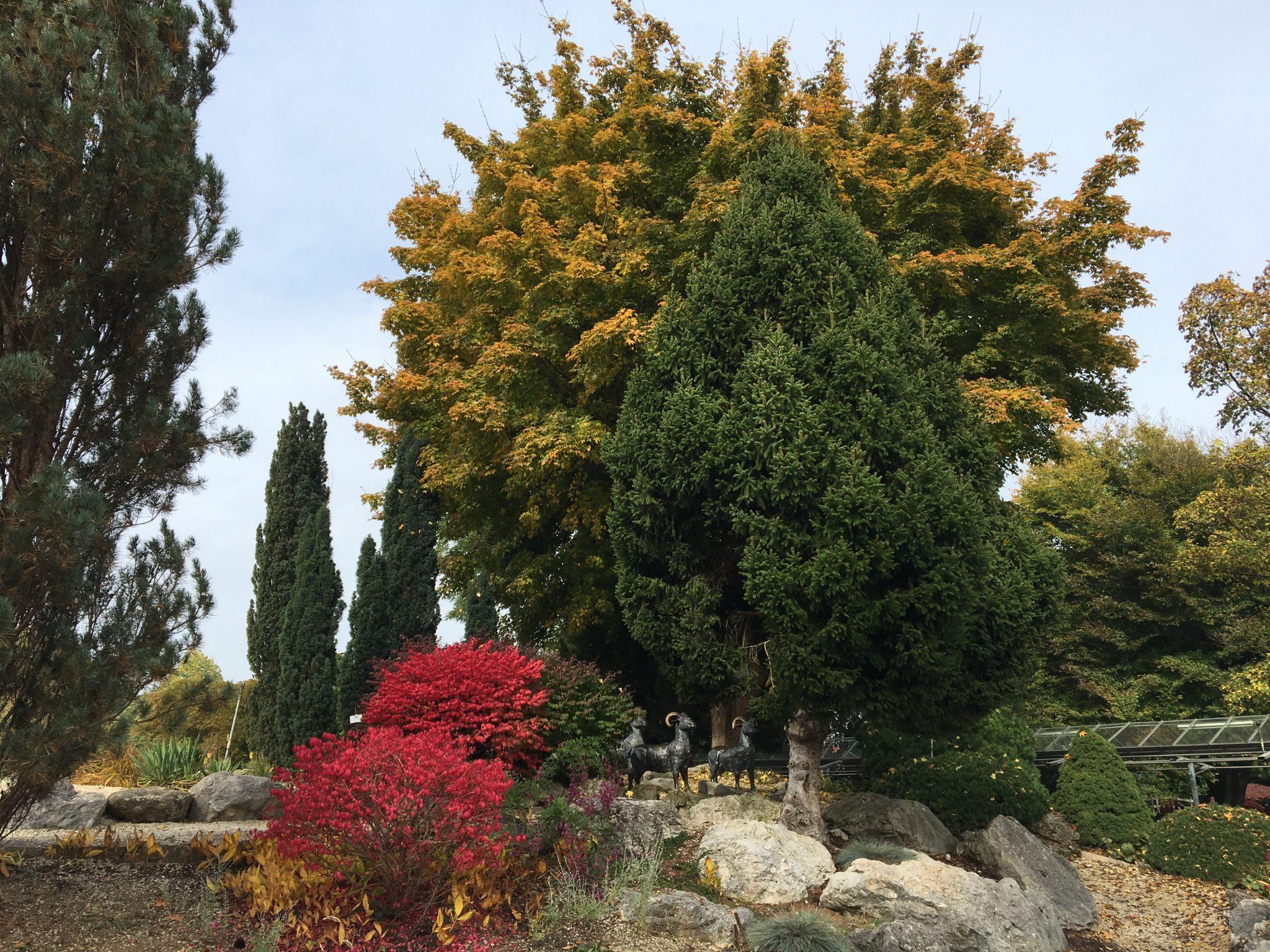 Dehner flower park in autumn